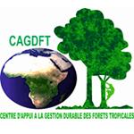 Logo_CAGDFT